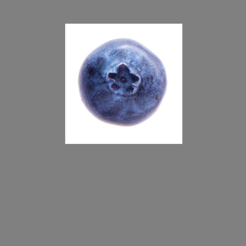 A ripe blueberry